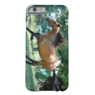 Buckskin Morgan Horse Barely There iPhone 6 Case