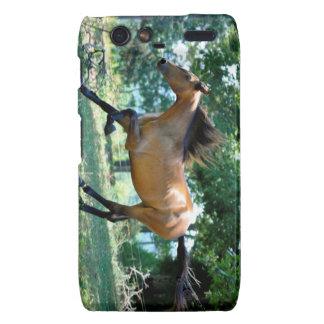 Buckskin Morgan Horse Motorola Droid RAZR Cases