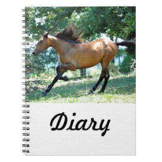 Buckskin Morgan Horse Spiral Notebooks