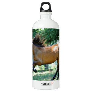 Buckskin Morgan Horse SIGG Traveler 1.0L Water Bottle