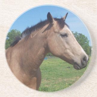 Buckskin Mustang Coaster