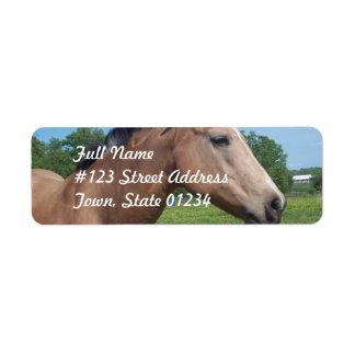 Buckskin Mustang Mailing Label