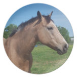 Buckskin Mustang Plate