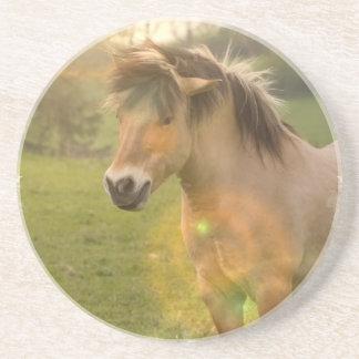 Buckskin Ponies Coasters