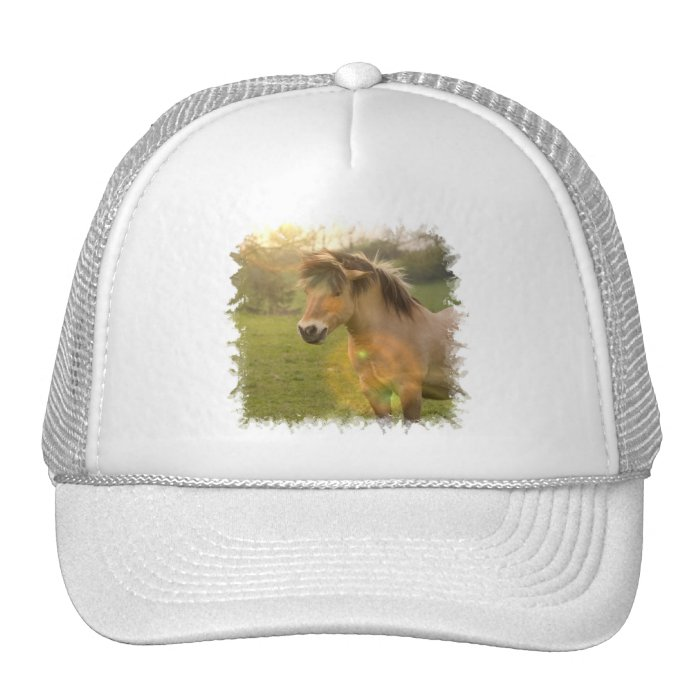 Buckskin Pony Baseball Hat