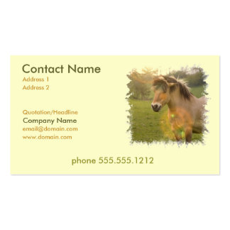 Buckskin Pony Busines Card Double-Sided Standard Business Cards (Pack Of 100)