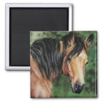 Buckskin Quarter Horse mare Magnet