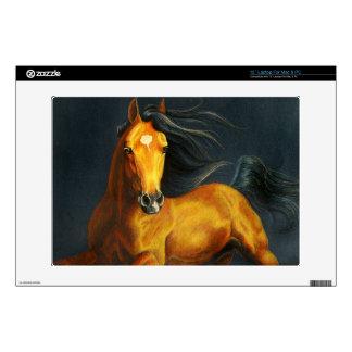 Buckskin Stallion Decal For Laptop