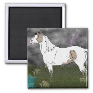 Buckskin Tovero Paint Horse Stallion Magnet