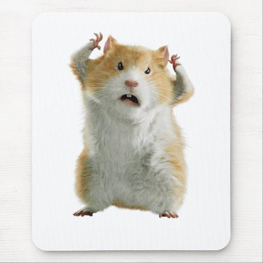Bucky Mousepad