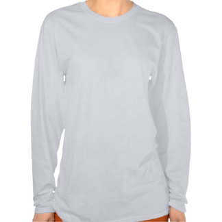 Bucle temporal del triángulo de Bermudas Camisetas