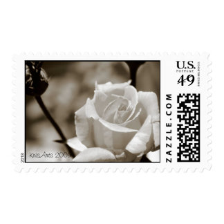 Bud and rose stamp