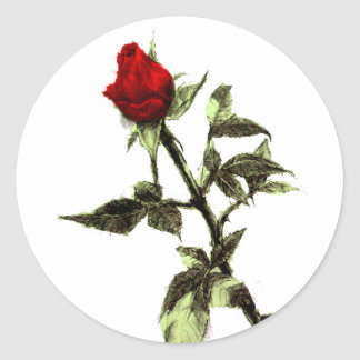 Bud of the red rose penciled classic round sticker