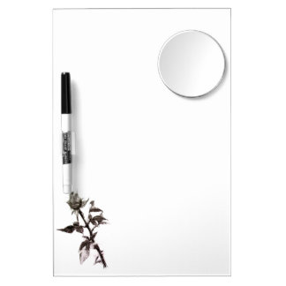 Bud of the rose penciled dry erase board with mirror