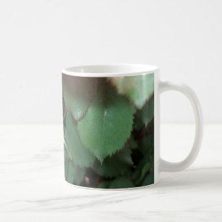 """""""BUD"""" ~ (Rose 4) ~ Coffee Mug"""