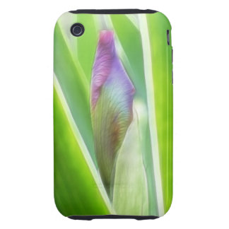 Bud To Bloom - Iris iPhone 3 Tough Cover
