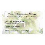 Bud To Blossom - White Hellebores Double-Sided Standard Business Cards (Pack Of 100)