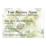 Bud To Blossom - White Hellebores Large Business Cards (Pack Of 100)