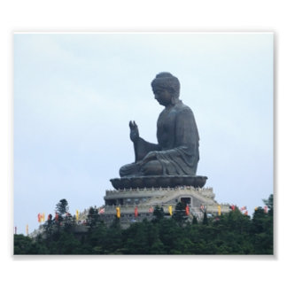 Buda Cojinete