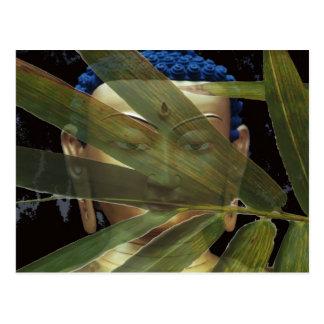Buda de bambú postal