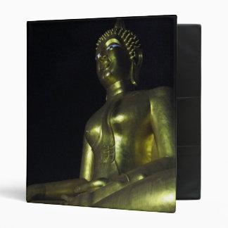 Buda de oro en la noche