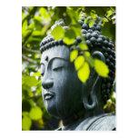 Buda en jardín del templo de Senso-ji Tarjetas Postales