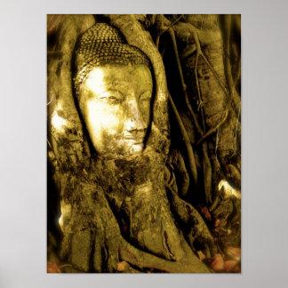 Buda entrelazó en baniano posters