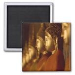 Buda Tailandia Wat/serenidad de la tranquilidad de Imán De Frigorífico