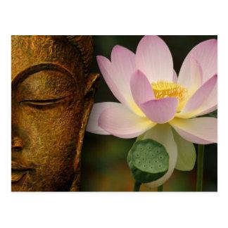 Buda y flor tarjeta postal