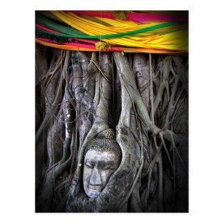 Buda y la fotografía de Tailandia del Buddhism del Tarjeta Postal