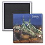 liberty, bridge, budapest, hungary, danube, night,