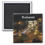 Budapest nightscape fridge magnets