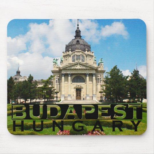 Budapest Tapetes De Raton