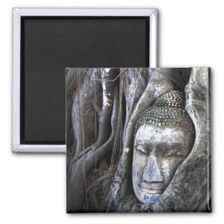 Buddha And The Tree Buddhism Thailand Photography Magnet