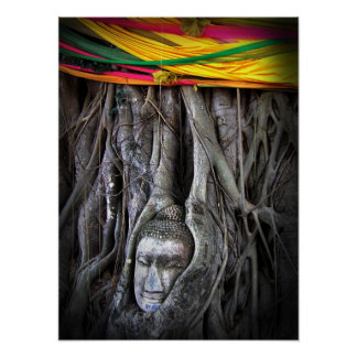 Buddha And The Tree Buddhism Thailand Photography Poster