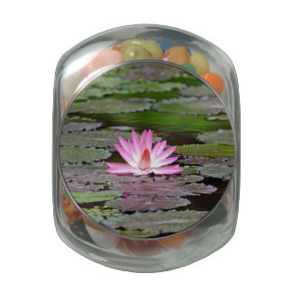 Buddha Asia Lotus Flower Jelly Belly Candy Jar