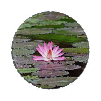 Buddha Asia Lotus Flower Jelly Belly Tin