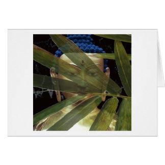 Buddha  Bamboo face Card