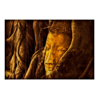 Buddha between the trees poster