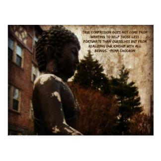 Buddha & Compassion Quote Postcards