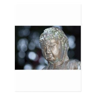Buddha Contemplating Postcard