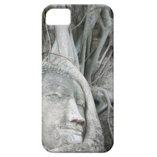 Buddha Head Case