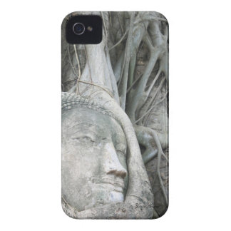 Buddha Head Case