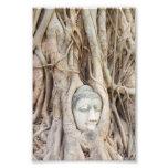 Buddha Head in Overgrown Tree Photographic Print