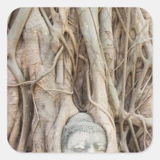 Buddha Head in Overgrown Tree Square Sticker