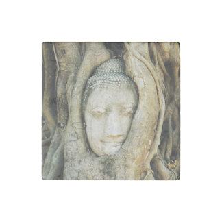 Buddha Head in the Fig Tree .. Ayutthaya, Thailand Stone Magnet