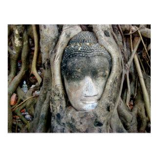 Buddha Head Postcard