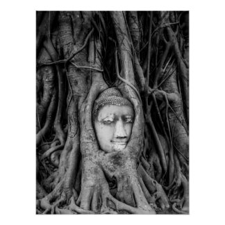 Buddha Head poster Thailand Black and White