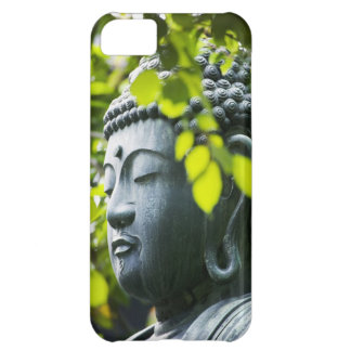 Buddha in Senso-ji Temple Garden Case For iPhone 5C