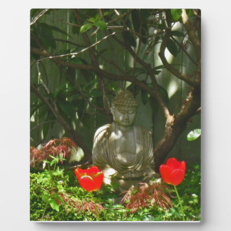 Buddha in Spring Display Plaques